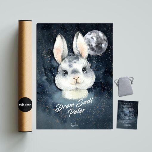 Kanin drømmefanger